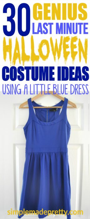 These 30 Halloween costume ideas for women are easy to DIY if you need a last minute halloween costume idea for women or girls. Instead of looking for Halloween costume little black dress ideas, try a little blue dress idea! These Halloween costumes for women are creative and I've never seen before!