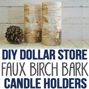 I made these Dollar Store DIY home decor vases as a Christmas Craft idea to give as gifts. These are the best dollar store DIY candle holder decorations I've found online! I love how this DIY adds rustic decor to our living room to create farmhouse style.