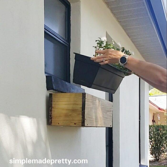 Easy DIY window box flowers