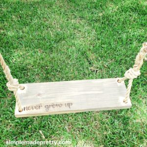 Never Grow Up DIY Swing Cricut