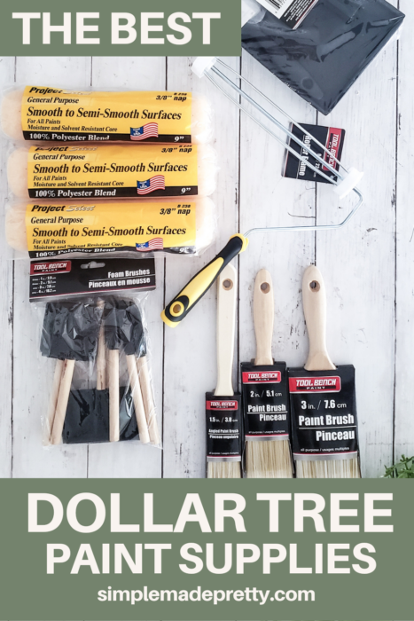 The Best Dollar Tree Paint Supplies