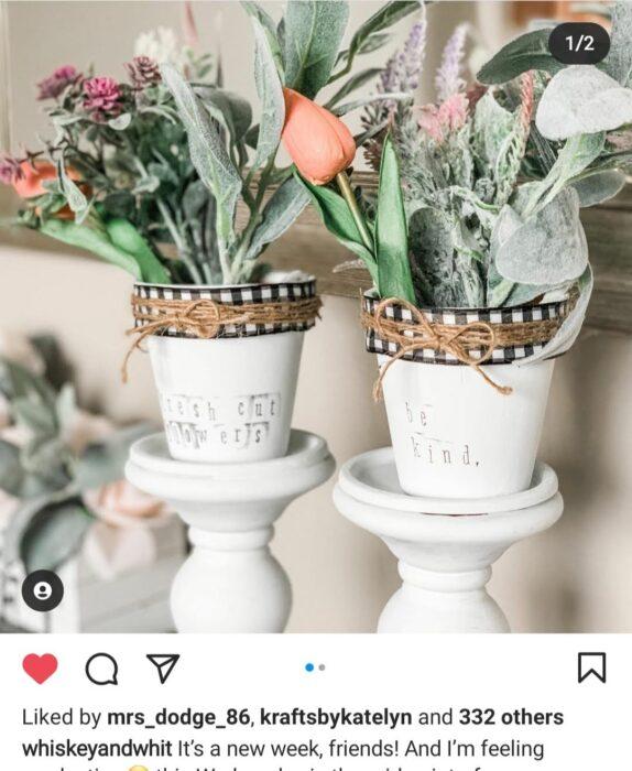 flower pots diy spring