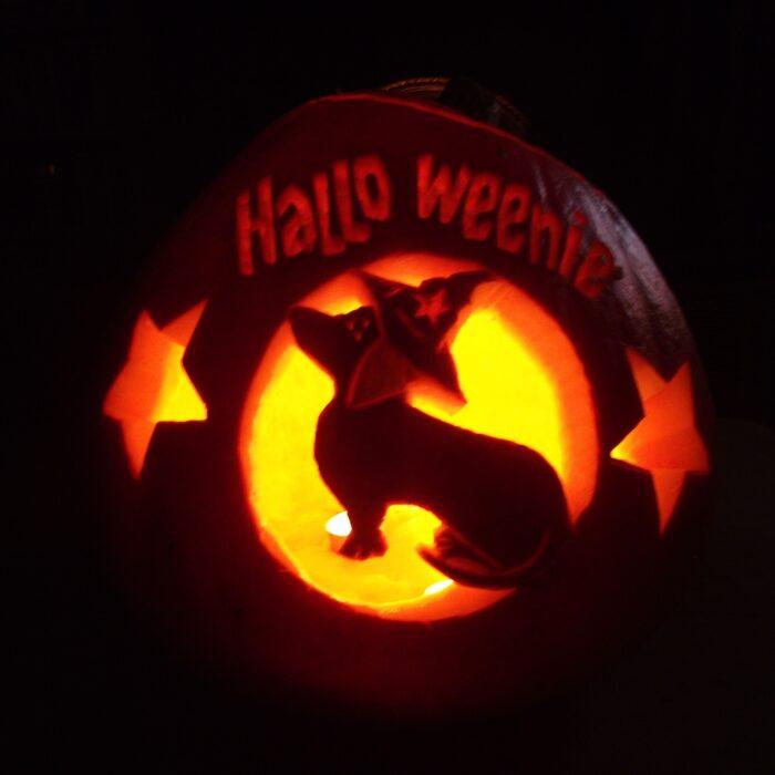 Halloween Pumpkin Carving Ideas DOG