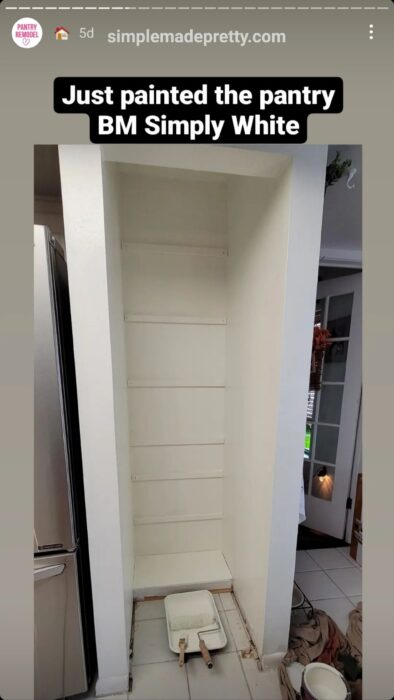Pantry Remodel small
